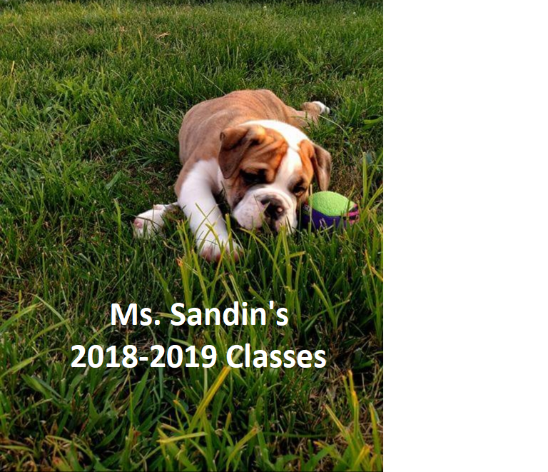 Ms. Sandin's 2018-2019 Classes